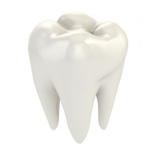 Tooth-300x300